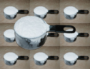 about 10 cups bread flour