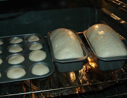 risen loafs